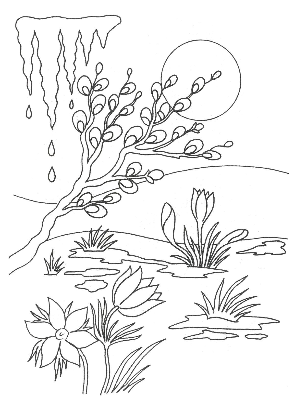 Картинка для раскраски весна