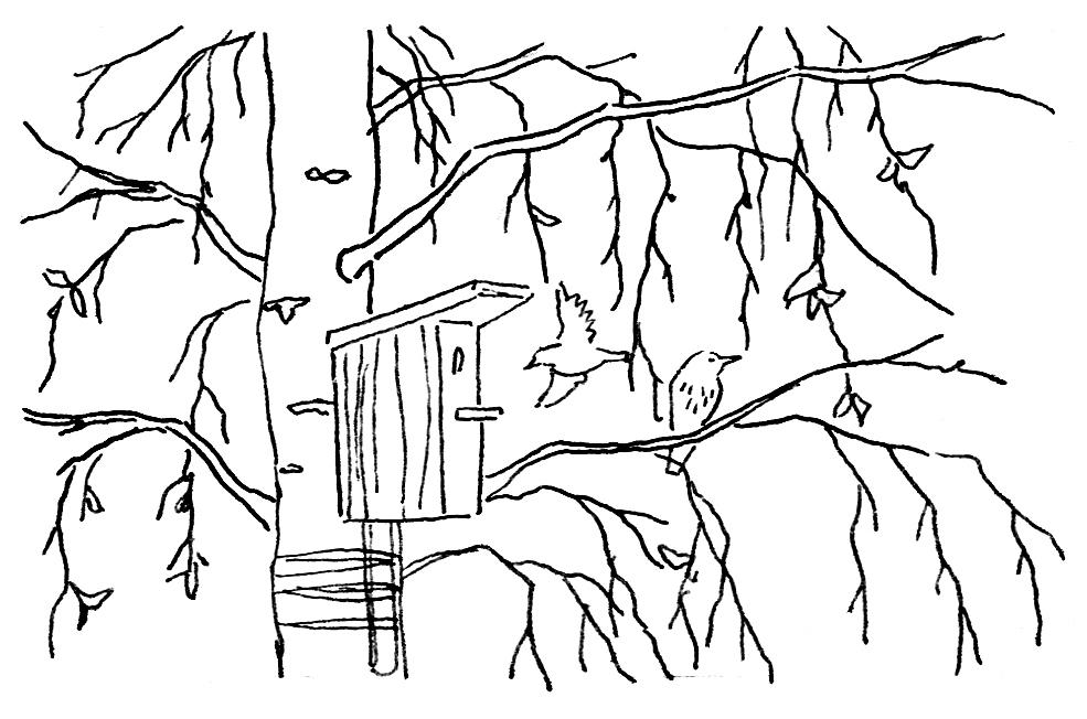 Раскраска осенний пейзаж детские раскраски распечатать