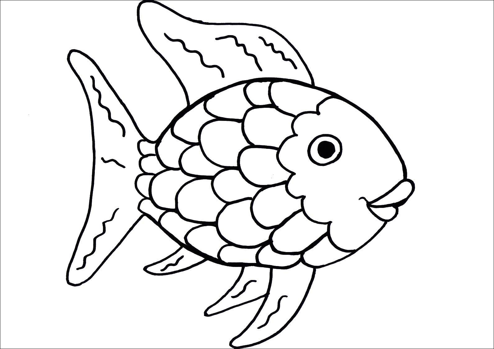 Rainbow Fish Book Coloring Pages
