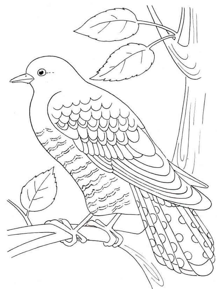 Перелетные птицы печатать