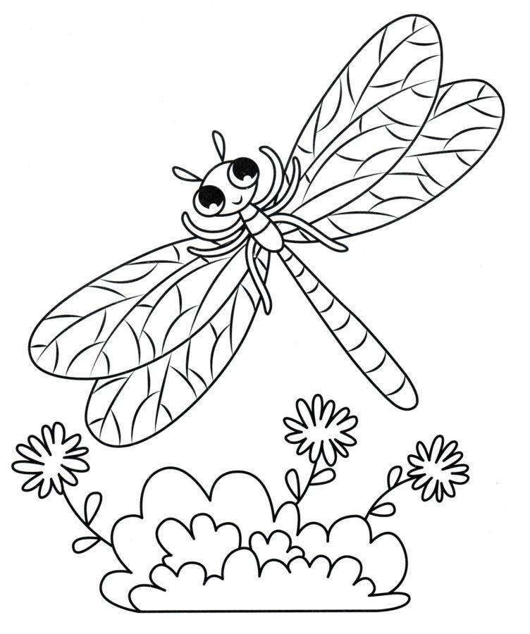 Раскраска для детей насекомые